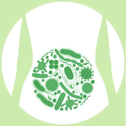 Tractul gastrointestinal este adeseori originea bolilor